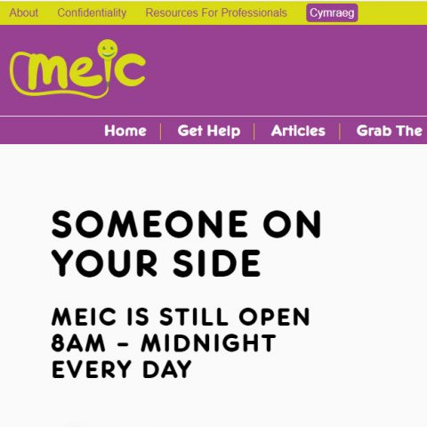 Meic website screenshot