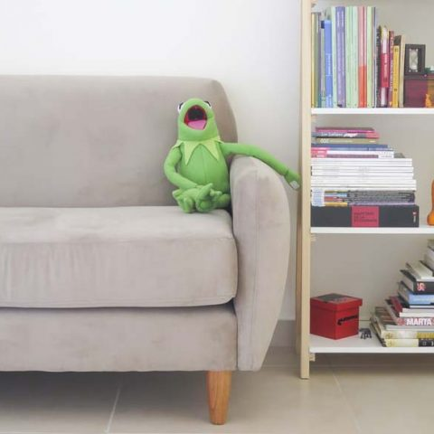 Kermit the frog puppet sitting on a sofa next to a bookcase