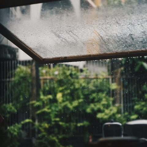 rain on the roof of a conservatory