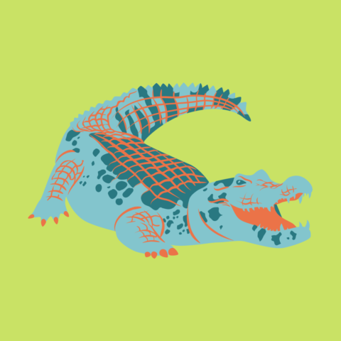 Graphic of an alligator