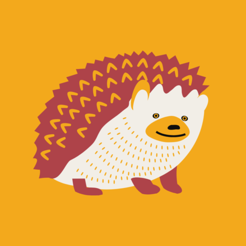 Graphic of a hedgehog which is an animal